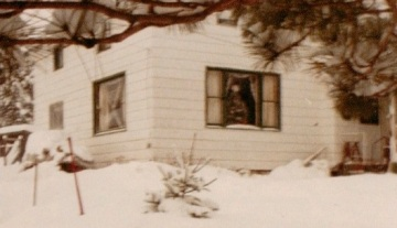 Winter Days, 1985 copy