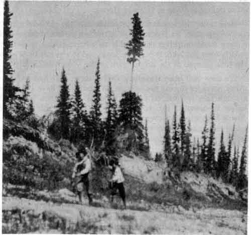 indians_tracking_past_lobstick